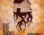 Oxe Eye Daises