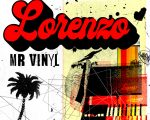 Mr Vinyl
